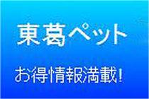 東葛ペット 厚木店 ピントビー販売 ブログ